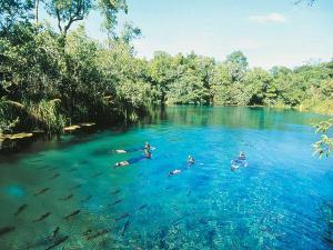 floating river Bonito