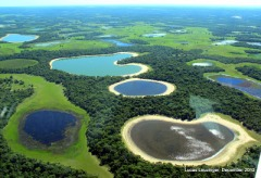 Pantanal_salina